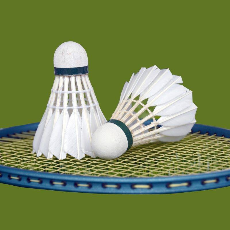 Badminton Loisir